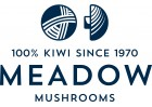 9283 Meadow Mushrooms Interim Brand Rejig Logo w Strapline invert 01 0...